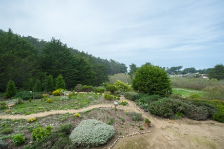 Welcome To Seal Cove Inn - Garden and Ocean Views